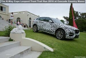 K-Way Cape Leopard Trust Trail Run 2016