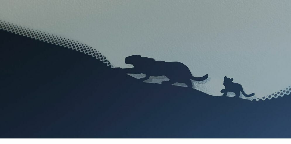 jaguar car print