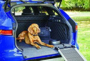 JAGUAR HAS THE PERFECT PRESENT FOR YOUR PET THIS CHRISTMAS