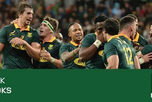 South Africa's Springboks vs England's Lions